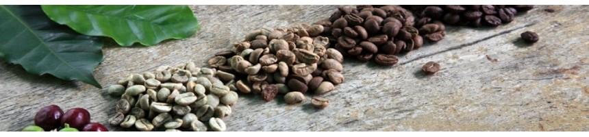 Notre assemblages maisons et cafés pures origines - Couleur Café